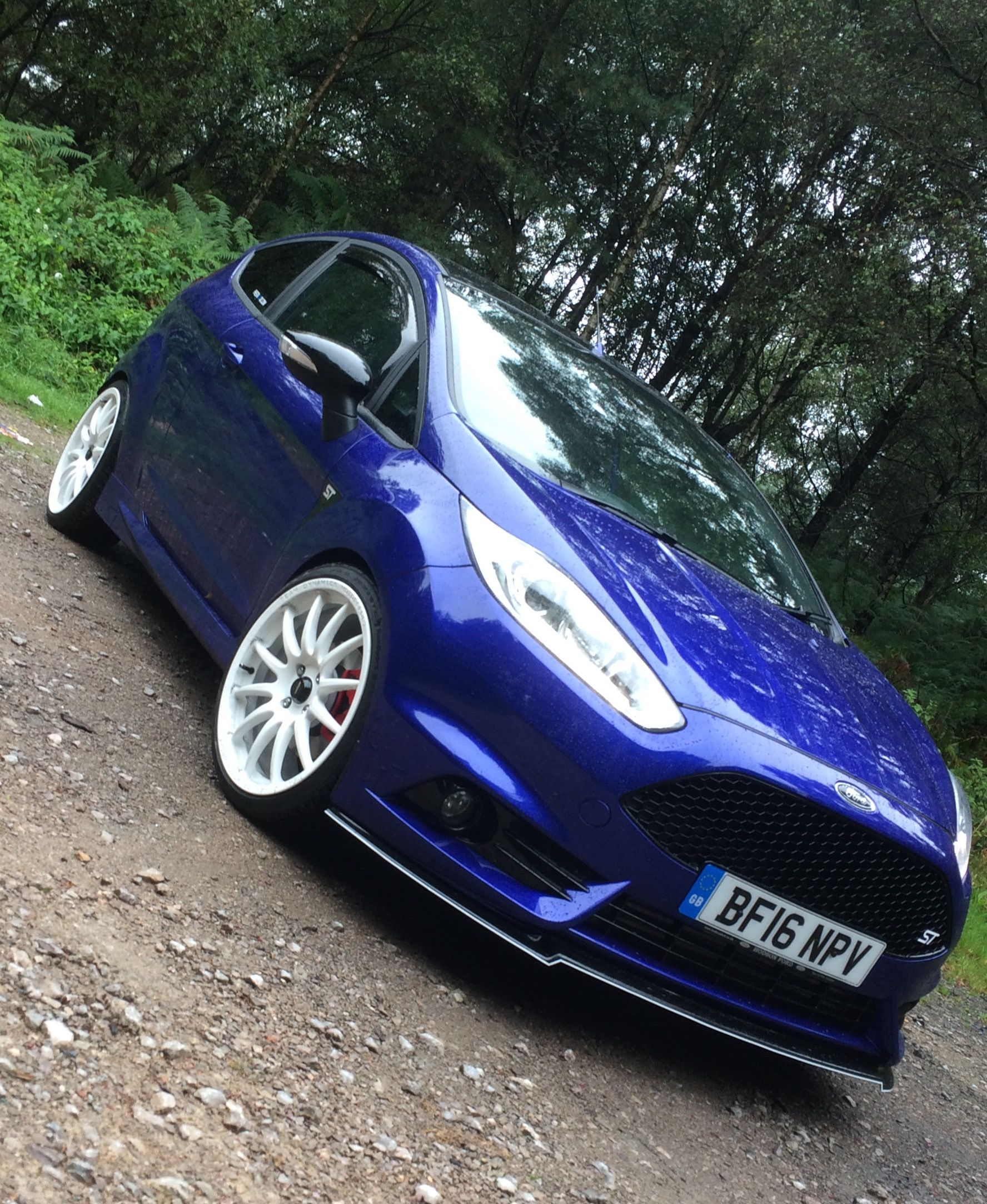 Ford Fiesta st3 mountune mp215 | S | Ford fiesta st, Fiesta