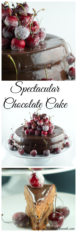 Spectacular chocolate cake recipes