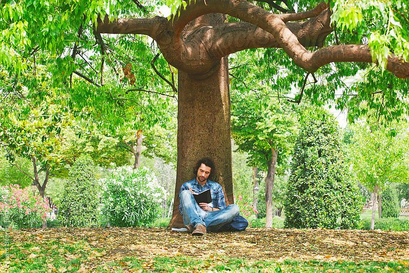 Young man writing on a notebook under a big tree of a park