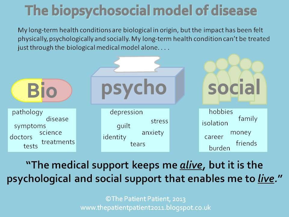 Bio Psycho Social Model Grad school Pinterest