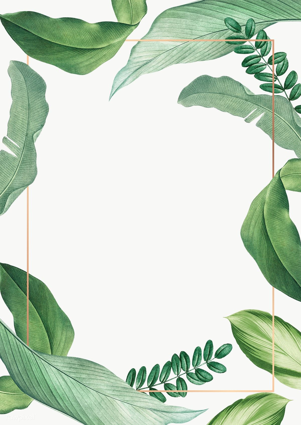 Download Premium Png Of Hand Drawn Tropical Leaves White Poster Tropical Leaves How To Draw Hands Leaf Background Exotic leaves, banana leaves, palm leaves, monstera leaves. hand drawn tropical leaves white poster