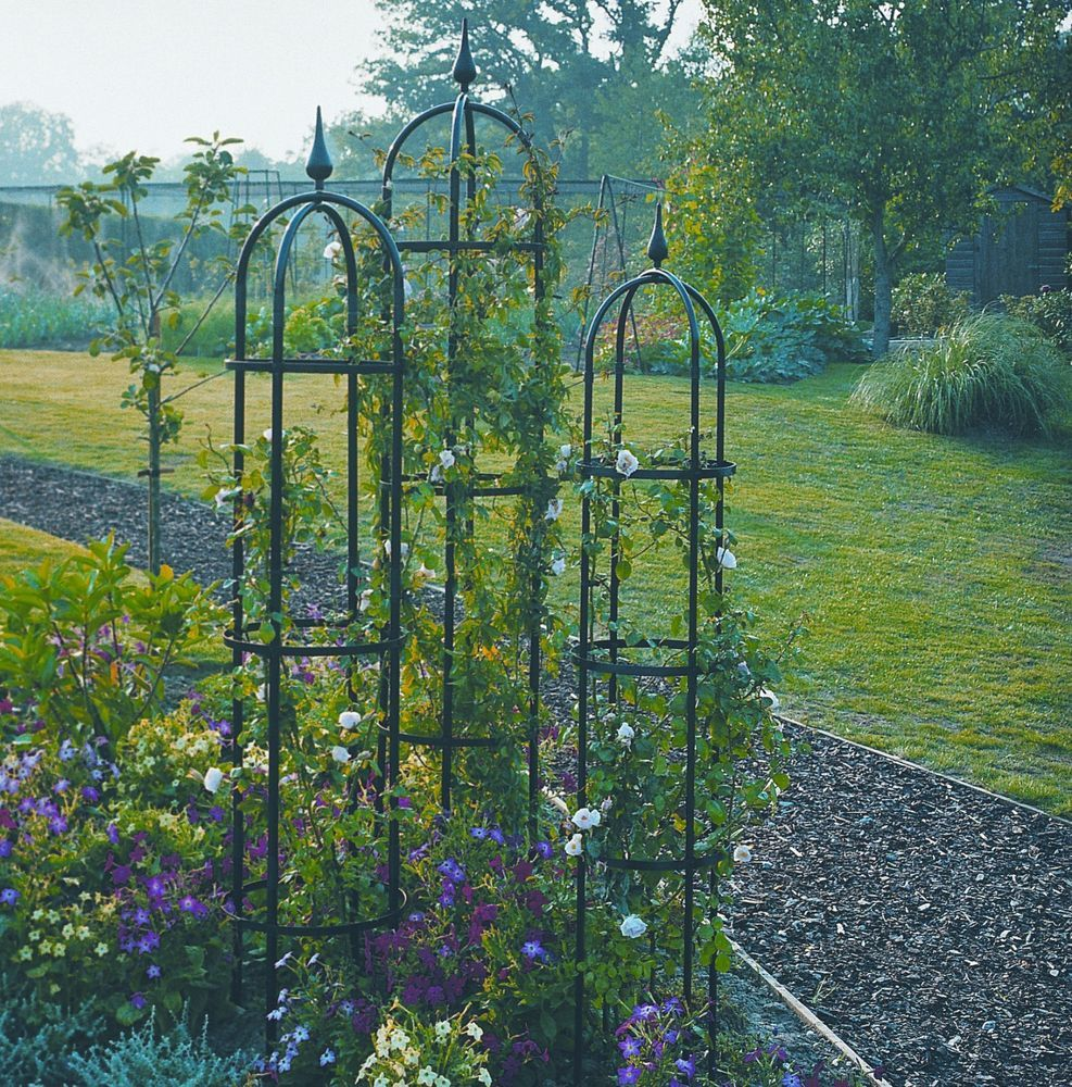 Pair of large 24m agriframes black metal garden obelisks for Garden obelisk