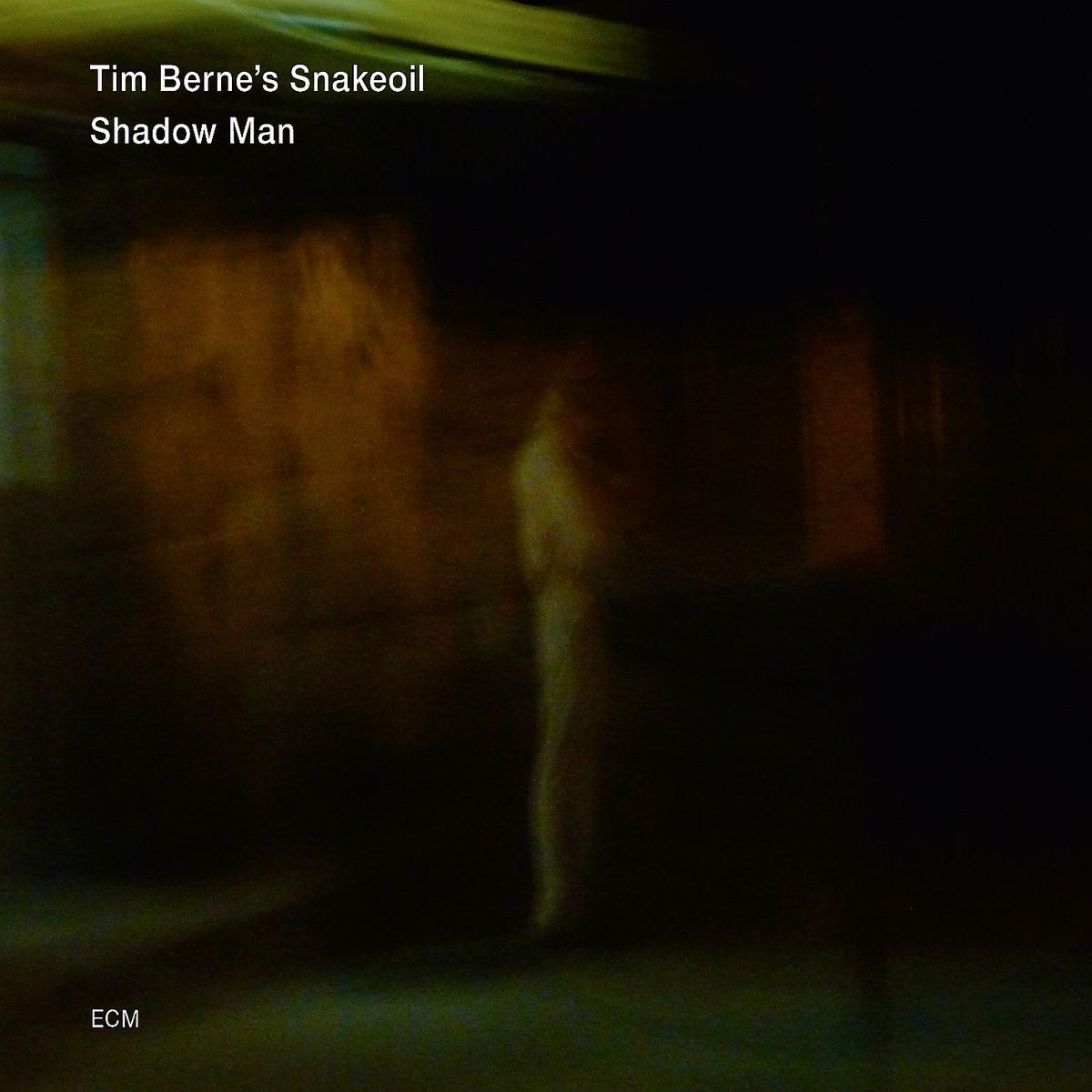 Tim Berne's Snakeoil – Shadow Man | Music of Our Heart