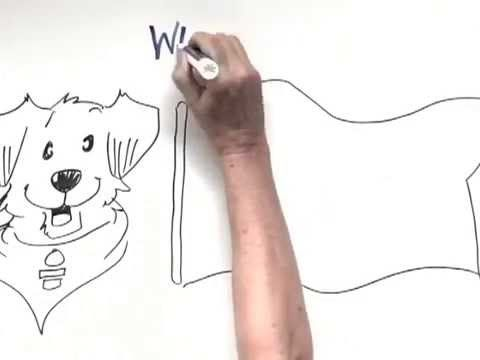 A snippet from an explainer video I recorded for Akron Childrens Hospital