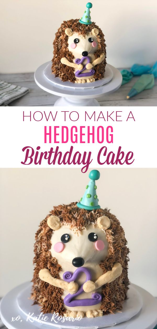 How to Make a Hedgehog Birthday Cake  #hedgehogcake