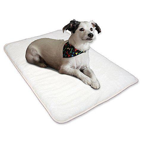 Wrap Up Your Pet In Complete Comfort With Petie S Crazy Warm Pet
