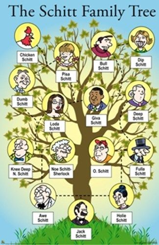 ahahaa jokes pinterest family tree art family trees and funny