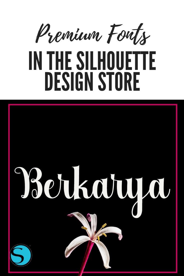 Logo Berkarya Png : berkarya, Berkarya, Beautiful, High-contrast, Font,, Ideal, Range, Projects., Poppy,, Modern, Feel…, Silhouette, Design,, Design, Store,