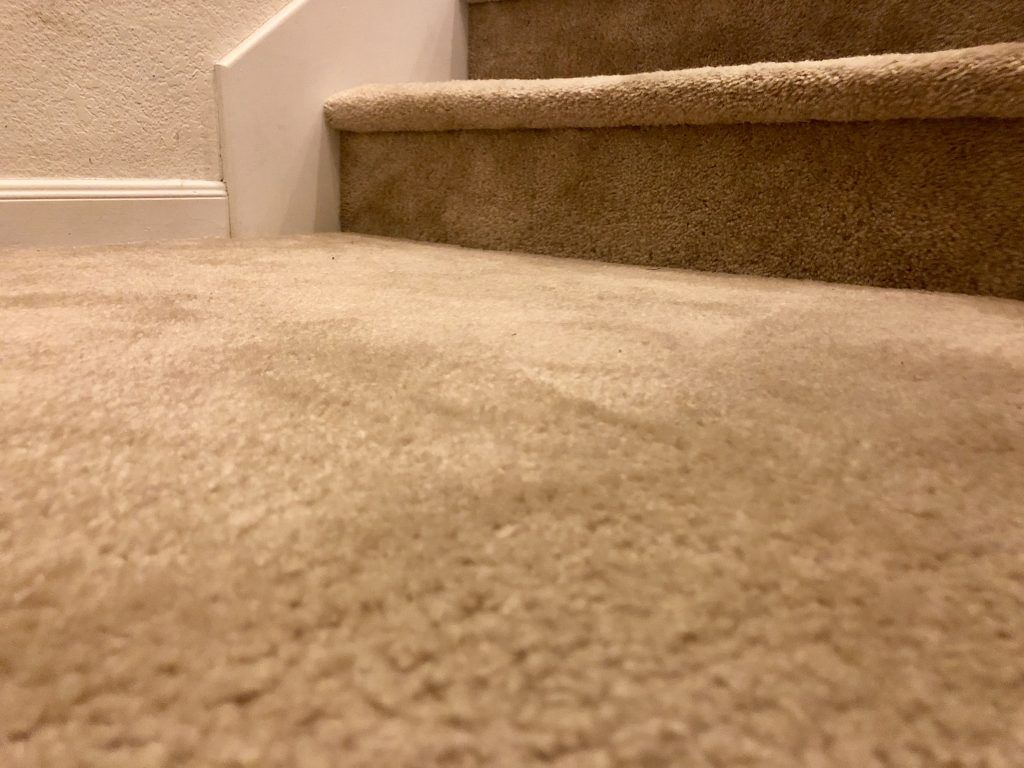 Is Carpet Cleaning Safe For My Kids My Pets And My Allergies How To Clean Carpet Carpet Living Room Carpet