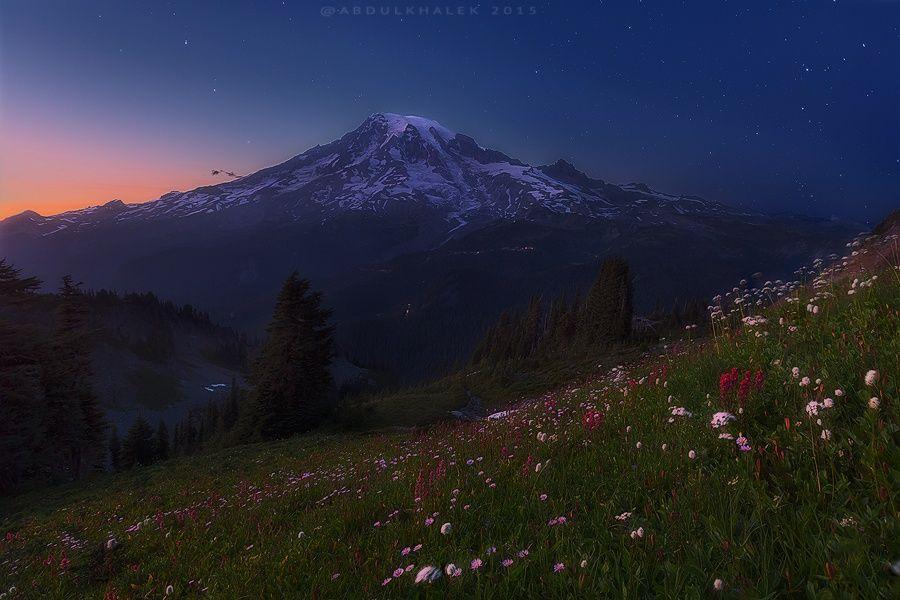 Pinnacle Twiglight by Abdulkhalek  on 500px