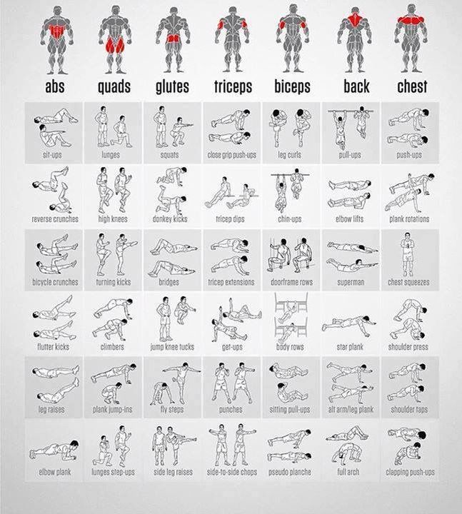 Here is an exercise chart to help you workout every part of your - pick chart