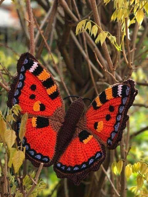 Pin de Adeline Wagret en lainage | Pinterest | El paso, 3d y Mariposas