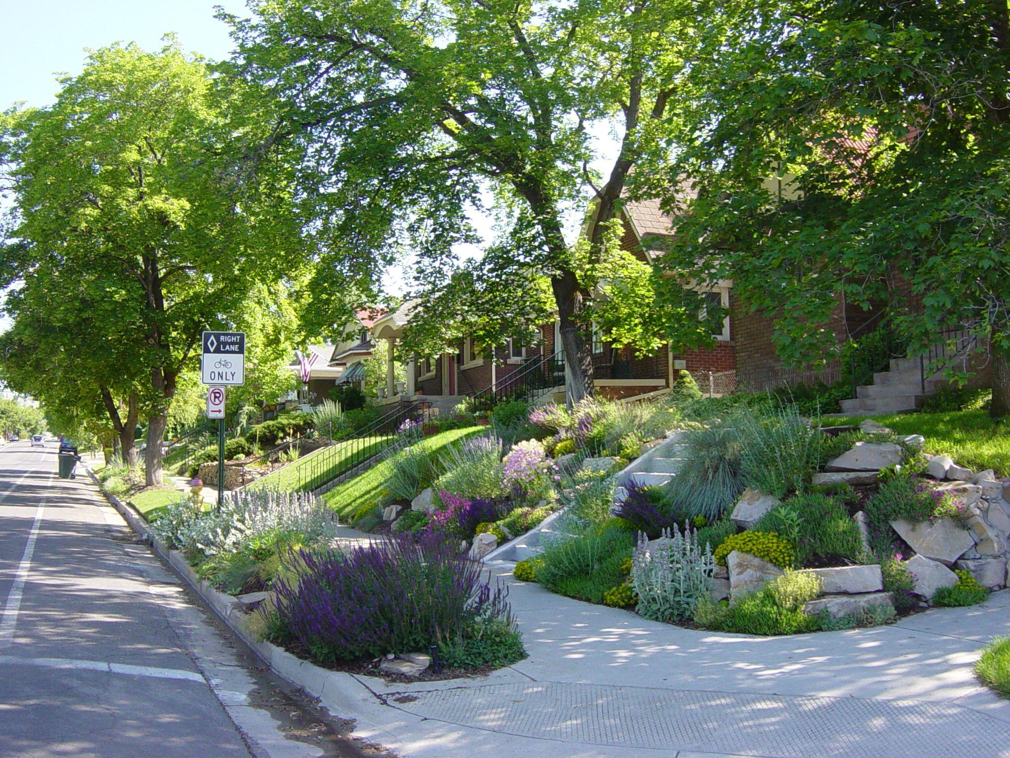 Front yard driveway landscaping ideas  Pass on the grass  garden  Pinterest  Grasses Gardens and Yard ideas