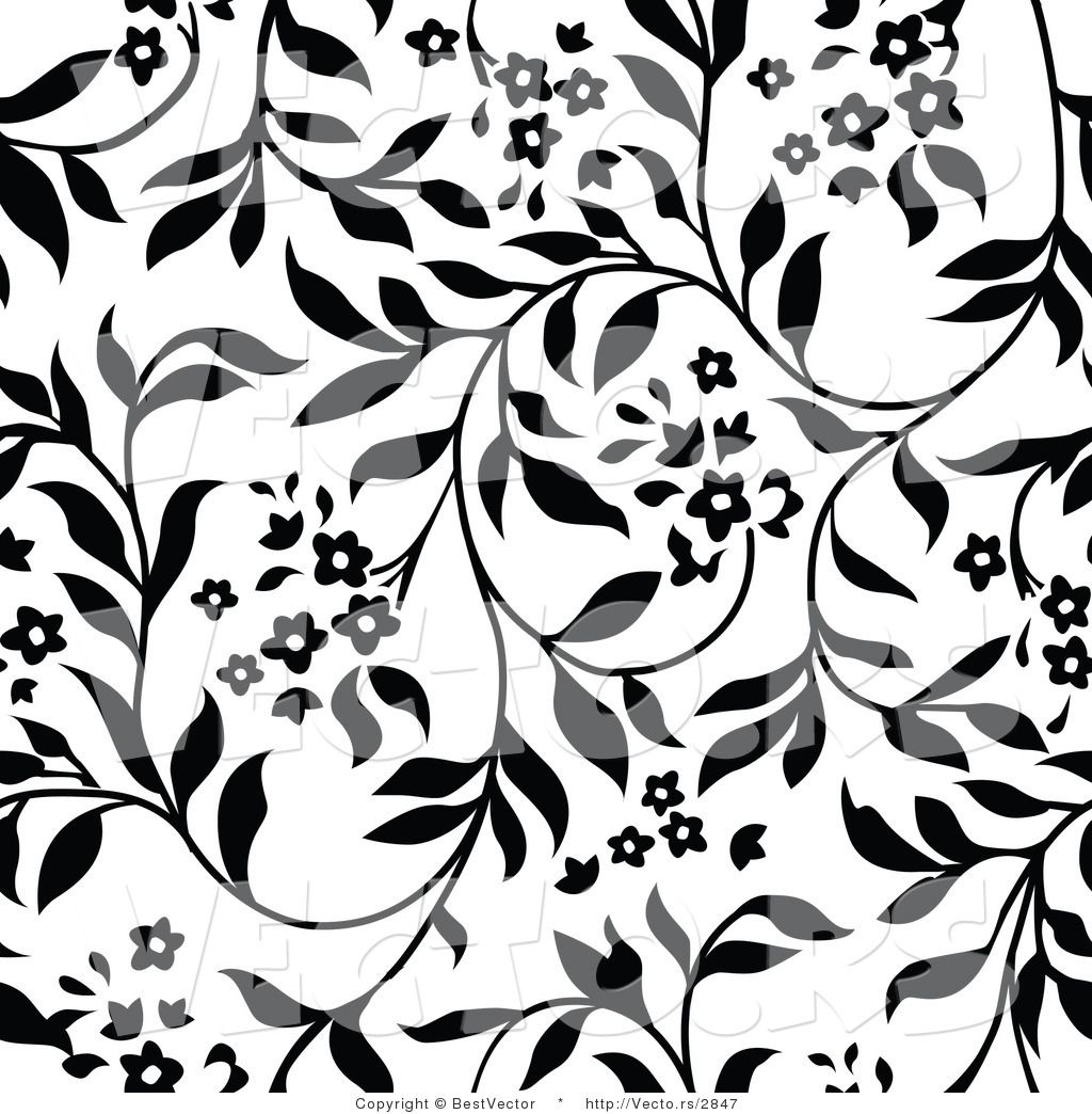 Vector of White and Black Floral Vines Background Pattern