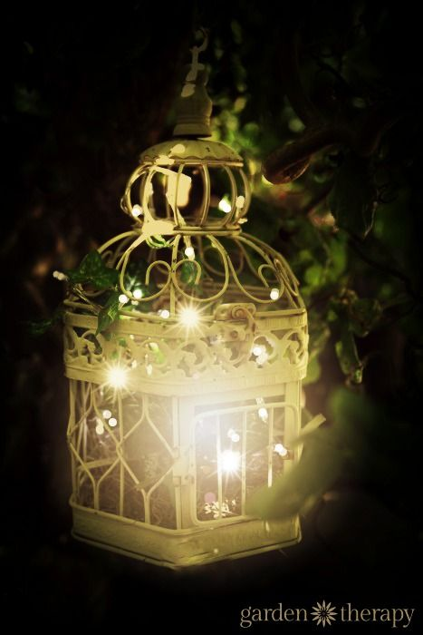Birdcage Outdoor Garden Light   Let The Birds Fly Free And Fill A Birdcage  With String Lights! See The Project Instructions Plus 20 More Ideas For  Creative ...
