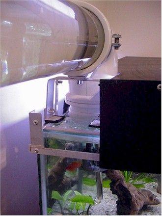 bio elite aquarium water bridge fish tunnel fish aquarium rh pinterest com