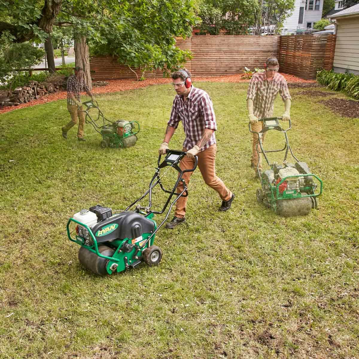 Restore a Weedy & Patchy Lawn