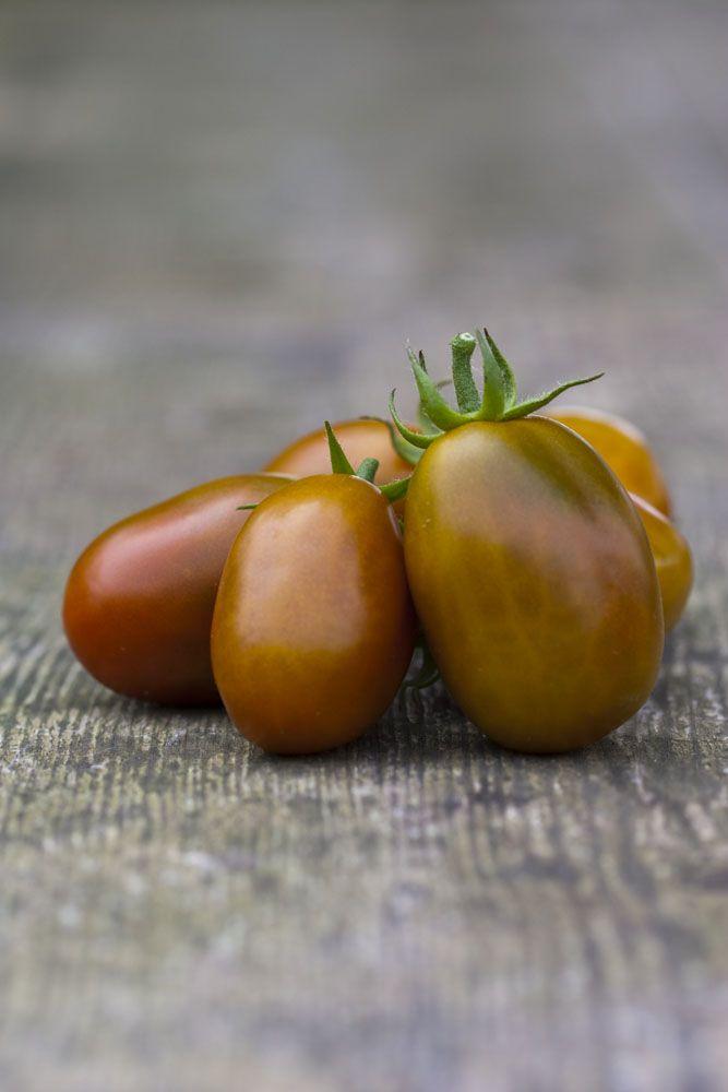 Tomaten Werden Braun
