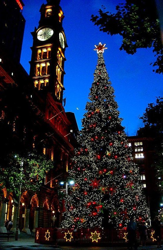Sydney Westin, Town Square Christmas Tree Snow - Light´s and