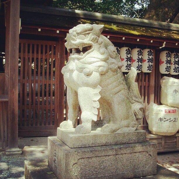 #Giardini_imperiali #Kyoto #Japan #2009  Photo by mauro977