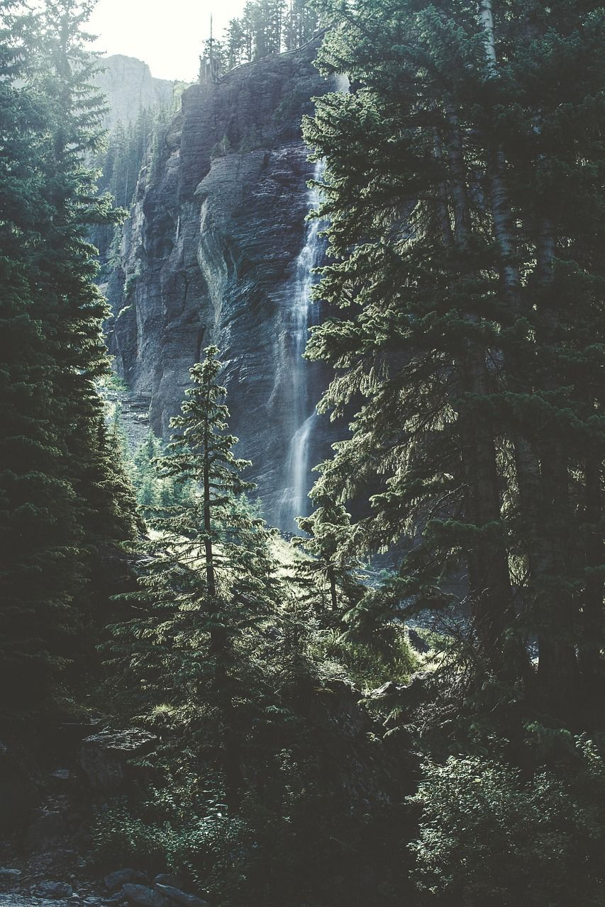 Nature Forest Trees Pines Waterfall Mountain Nature Pictures Nature Images Nature Photography