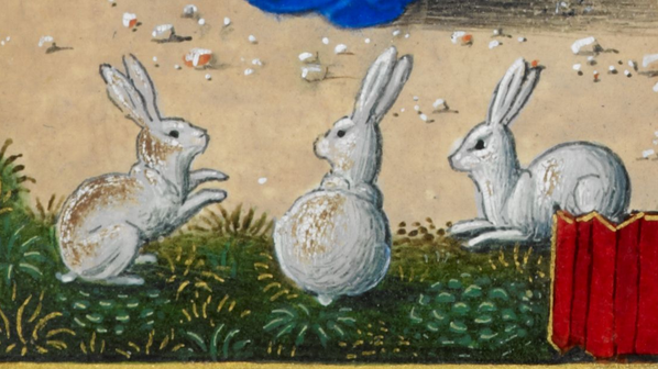 More medieval bunnies. Add MS 34294 f. 214r @BLMedieval pic.twitter.com/dgZAanAyMd