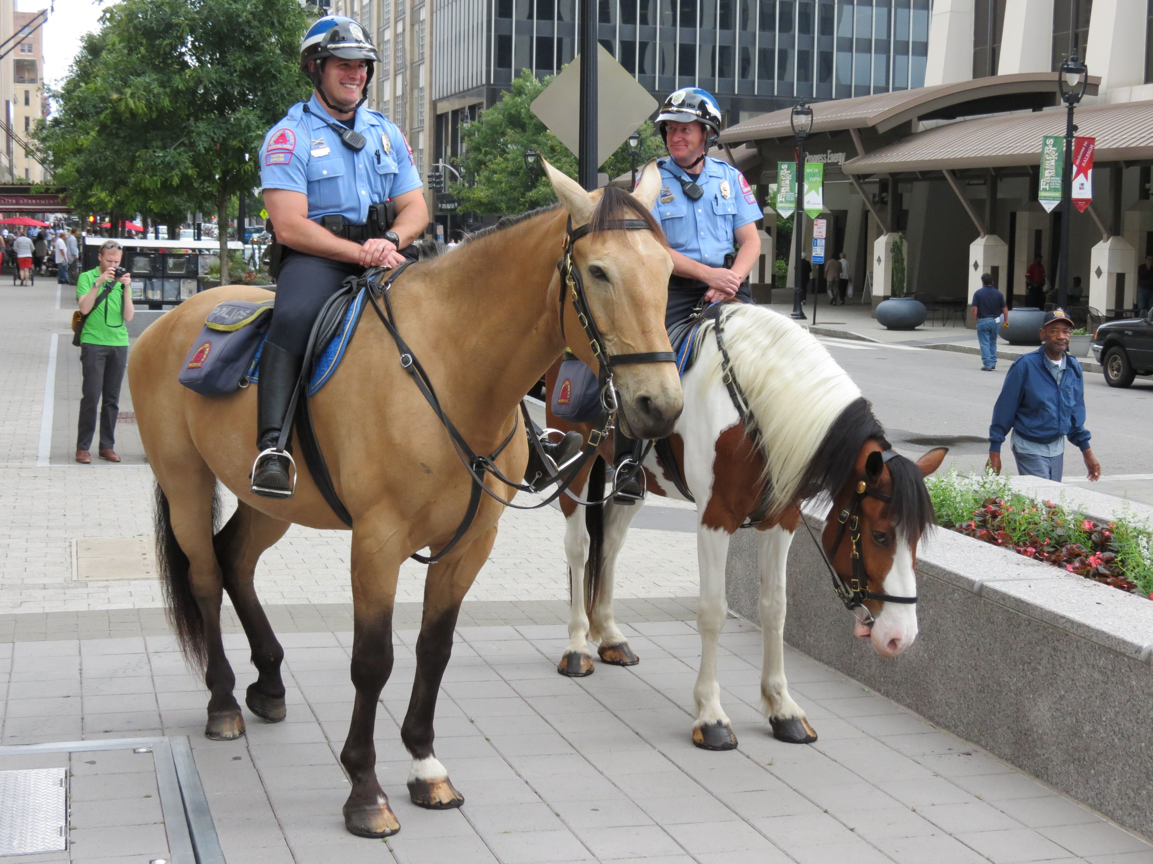 Mounted police Horses, Police, Law enforcement