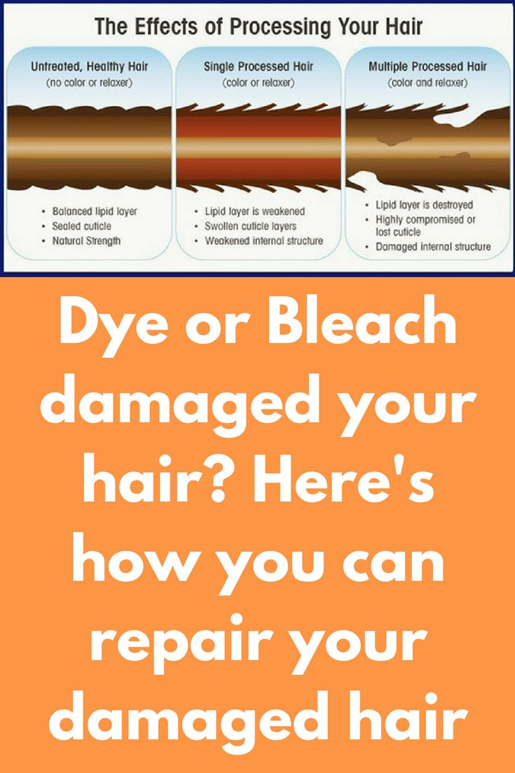 Dye or bleach damaged your hair hereus how you can repair your