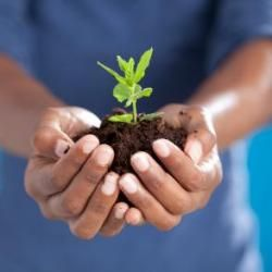 Sow the Seeds of Happiness and Health