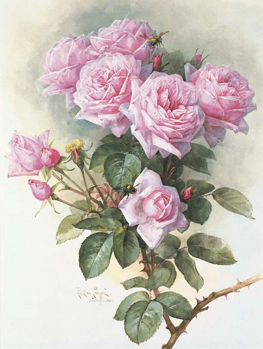 Interior&Decor: Картинки для декупажа. Paul de Longpré (1855-1911)