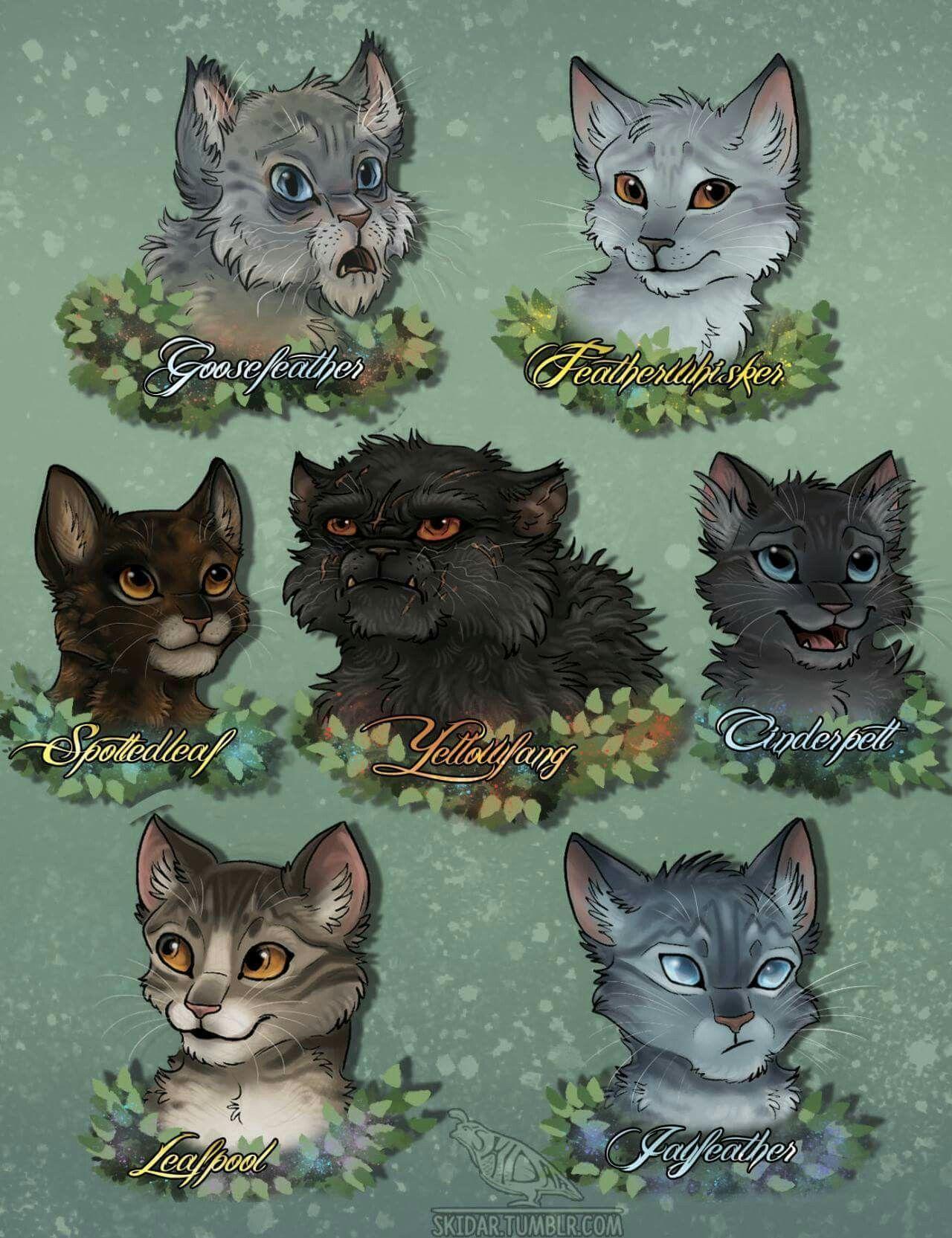 ThunderClan medicine cats Warrior cats, Cat care, Cat