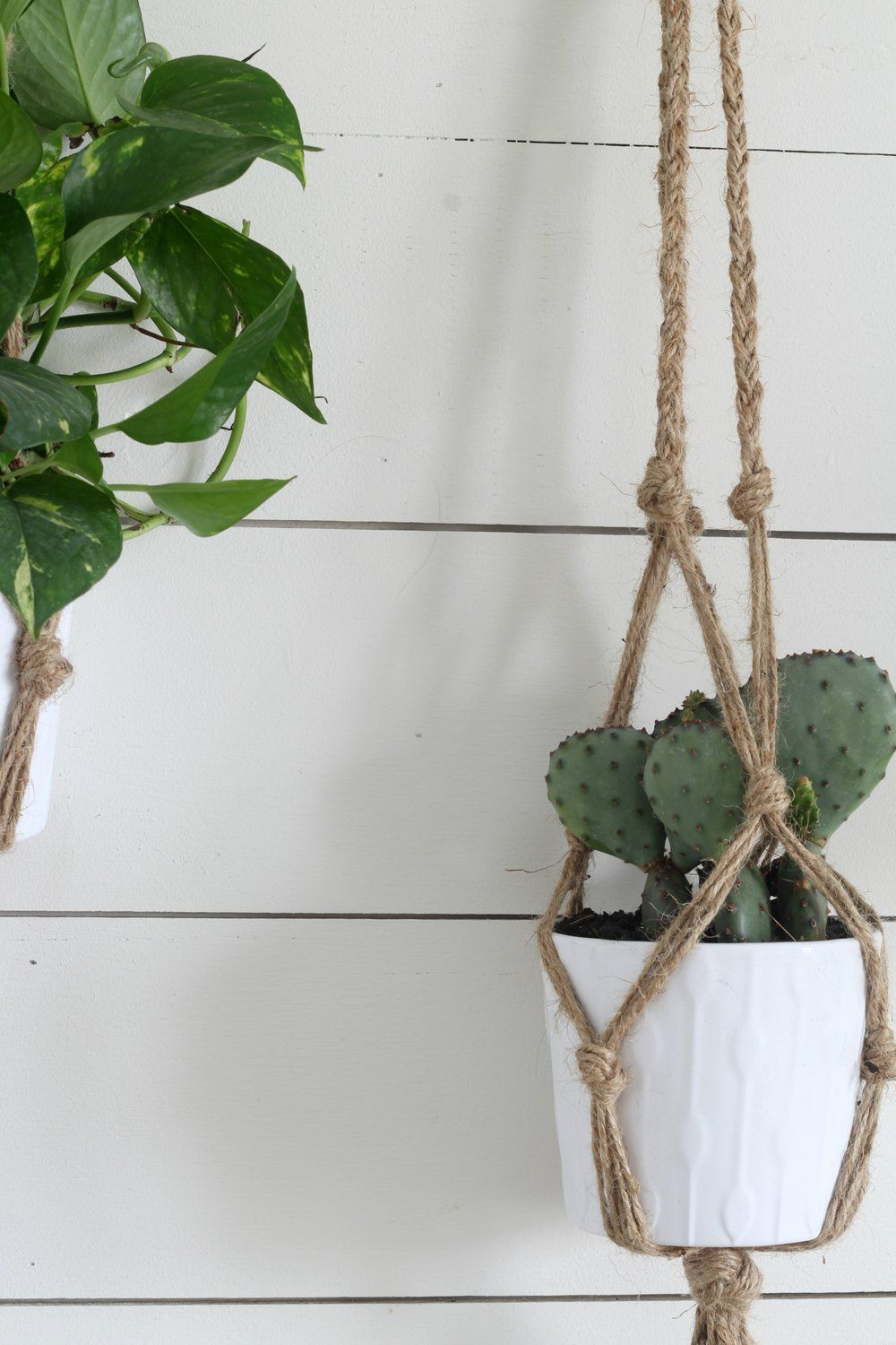 Simple Diy Macrame Plant Hanger With Video Tutorial Diy Macrame Plant Hanger Macrame Plant Hanger Plant Hanger