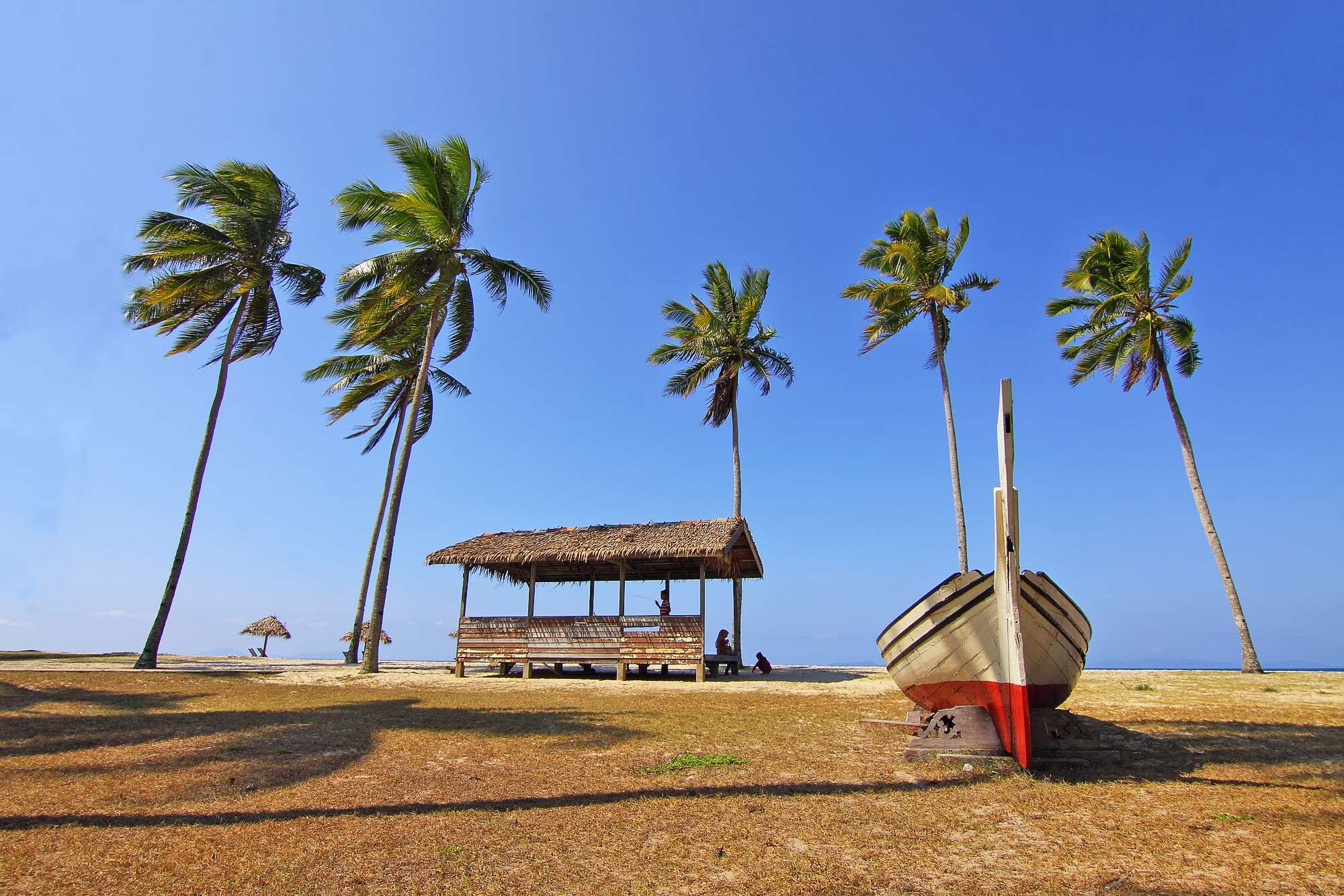 Beach Beach Chairs Blue Boat Chair Hut Landscape Nature Ocean Outdoors Palm Palm Trees People Resort Sand Sea Seascape Seashore Trees Tropica