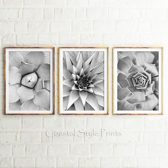 Black And White Cactus Prints Set Of 3 Cacti