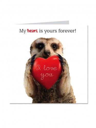 Crazy Critterz Valentines Card Meerkat Clintons Valentines Cards Cards Anniversary Cards
