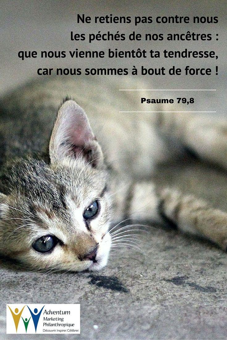 26 juillet 2016 – Psaume 79,8 | Psaumes, Texte biblique, Biblique