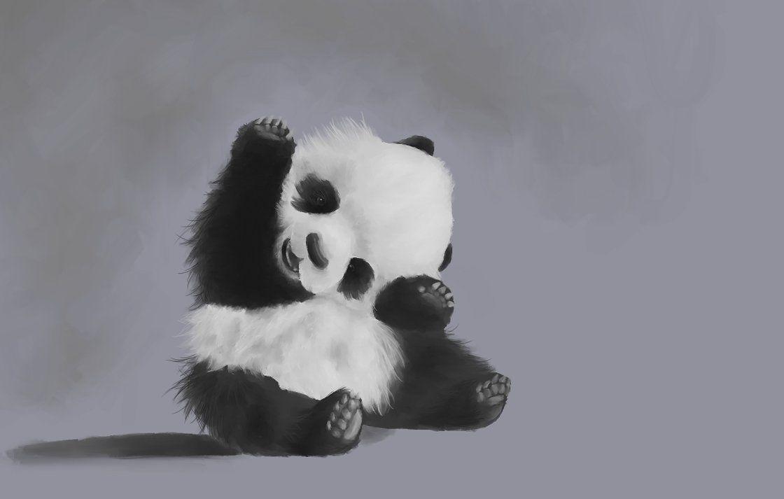 Cute Little Panda Little Panda Panda Whatsapp Dp Images