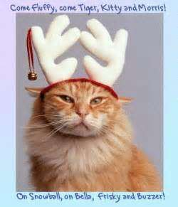 Superior Funny Christmas Quotes For Facebook   Profile Picture Quotes