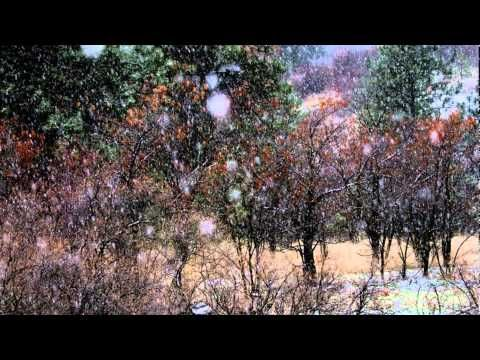 'Carol of the Bells' instrumental (piano, guitar, cello, bass trumpet) snow/christmas sequence ...
