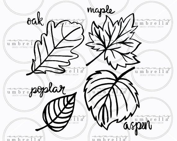 Leaves Clipart Leaves Svg Fall Leaves Hand Drawn Silhouette Cut