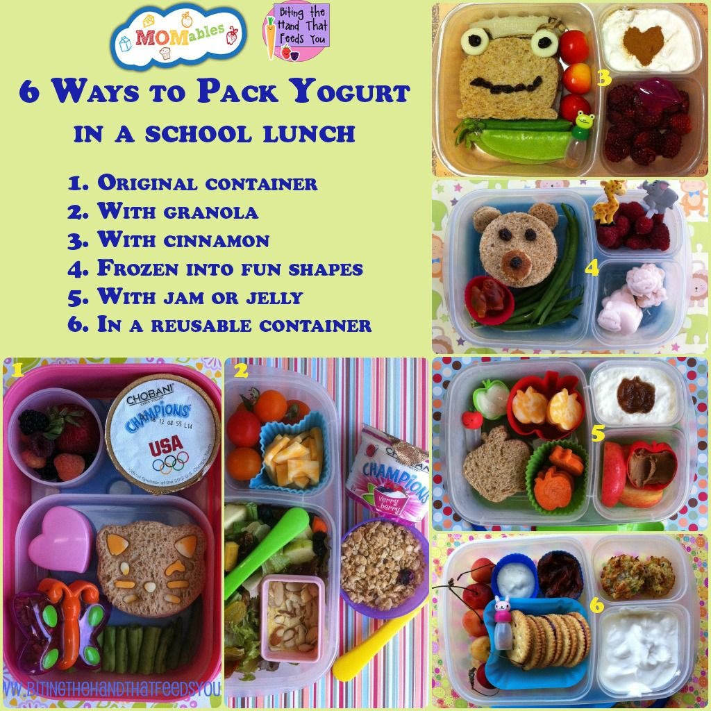 6 Ways To Pack Yogurt In A School Lunch MOMables