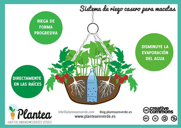 Riego Por Goteo Casero Con Botellas De Plástico Plantea En Verde Riego Por Goteo Casero Riego Por Goteo Sistema De Riego Por Goteo