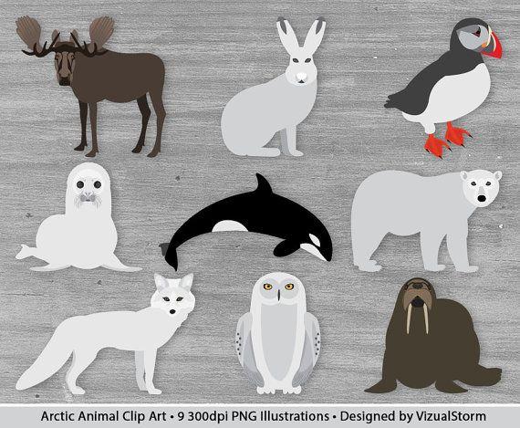 Arctic Animals Clipart Antarctica Wildlife Moose Puffin Etsy In 2020 Animal Clipart Artic Animals Arctic Animals