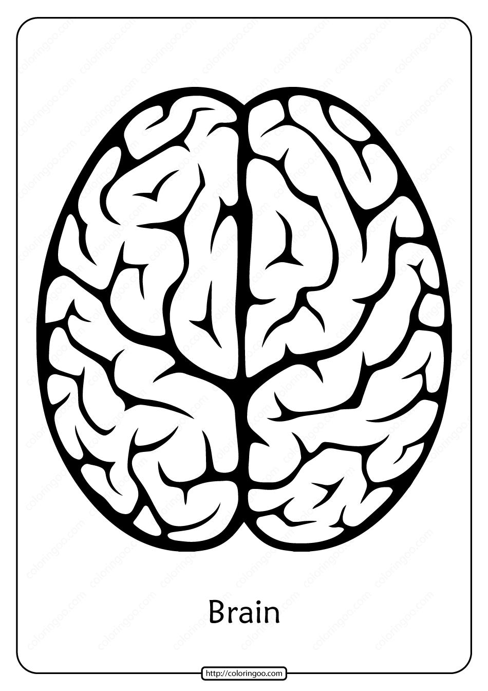 Free Printable Brain Outline Pdf Coloring Pages Coloring Pages Outline Free Printables