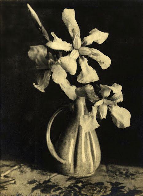 Laure Albin-Guillot- Vase aux Orchidées, 1938