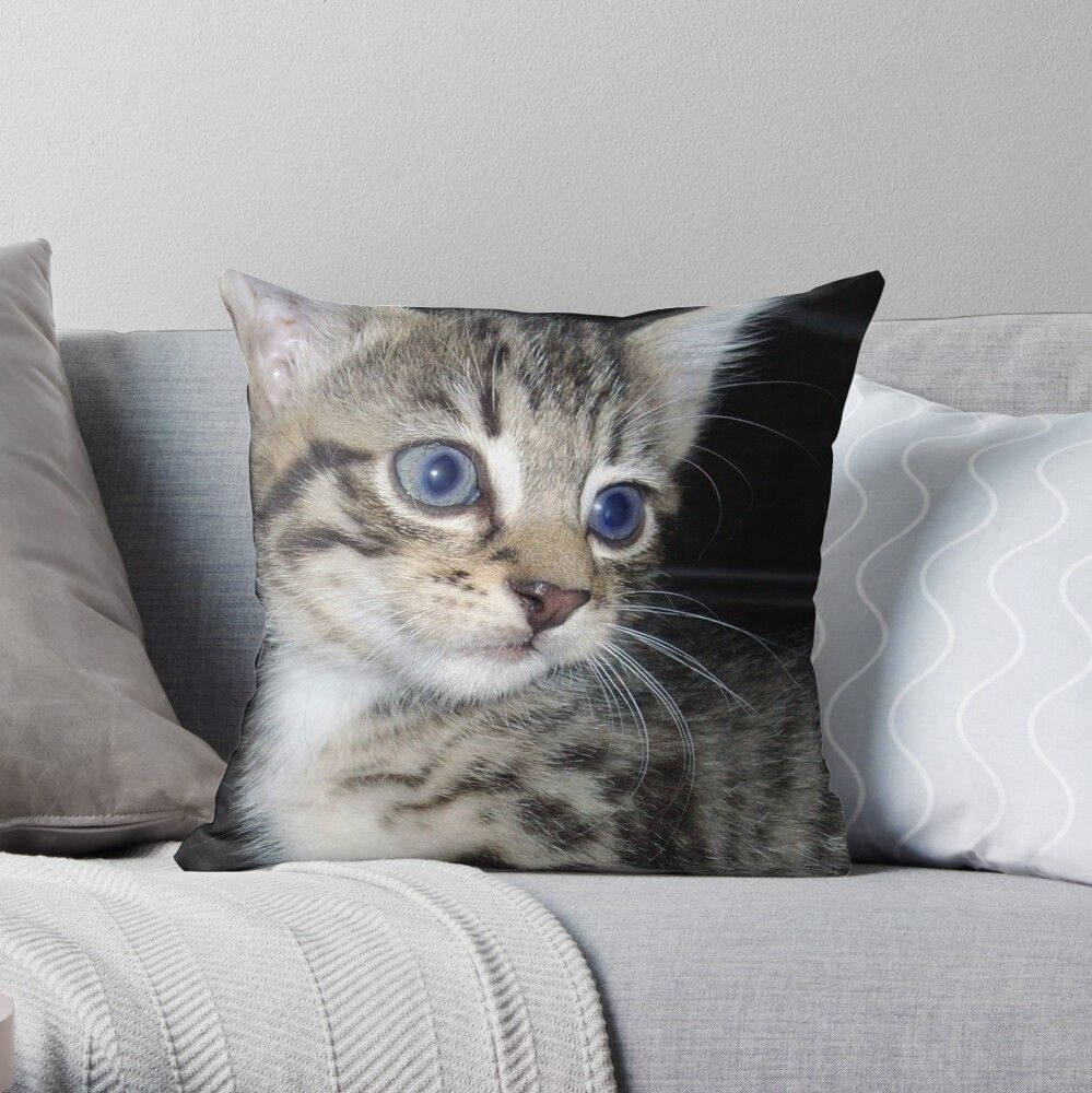 Attacked By A Blue Eyed Grey Striped Fluffy Kitten Throw Pillow By A Work Of Art In 2020 Fluffy Kittens Kitten Grey Stripes
