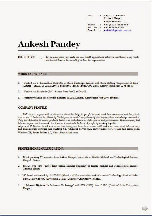 international resume format Sample Template Example of ExcellentCV - company profile template doc