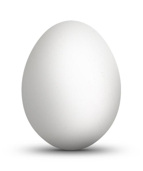 Jonathan Dredge:Egg. S)