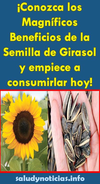 semilla de girasol como se consume para bajar de peso
