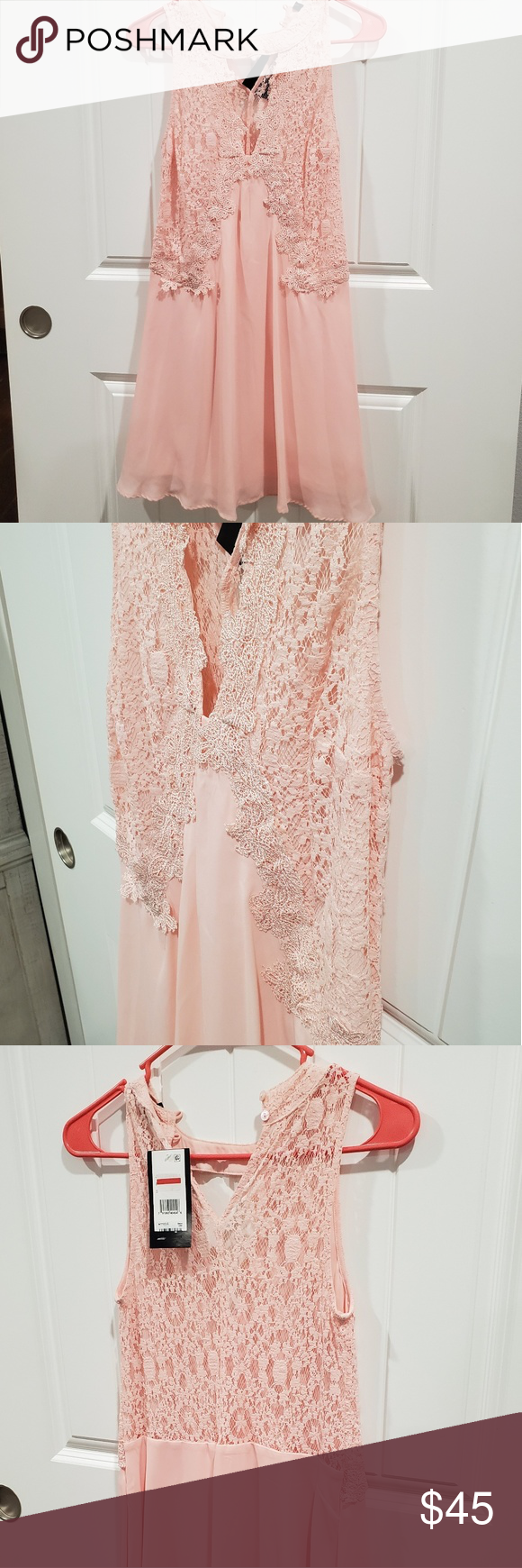 Pink lace cocktail dress NWT- The detail on this dress is gorgeous.  The top is lace and lined, the back is lace with no lining. Dresses Backless #backlesscocktaildress